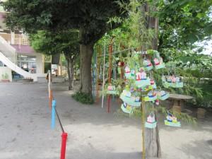前日短冊が付けられた竹笹が園庭に飾られました